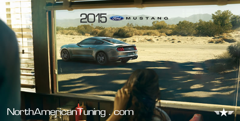 2015 Ford Mustang Unveiling Silver