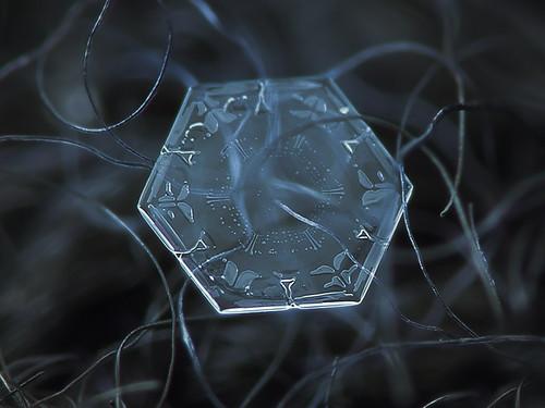 Snowflake. Alexey Kljatov.