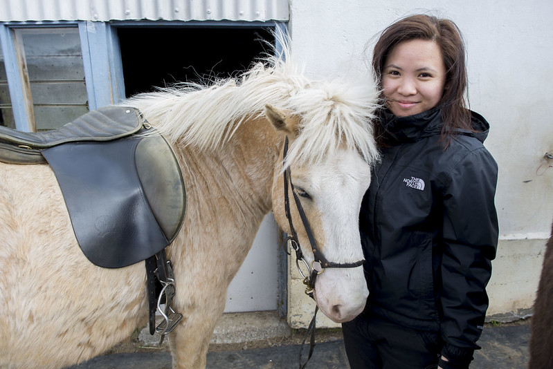 horse riding in Akureyri Iceland