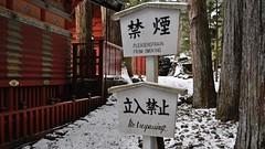 No Smoking, No Trespassing, Tōshō-gū shrine, Nikko (2010)