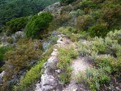 Le sentier de Sud Balardia : arrivée au sentier après descente directe depuis le col 890m