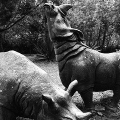Statues of the Sumatran and Javan #rhinos at Taman Safari, Bogor, Indonesia.