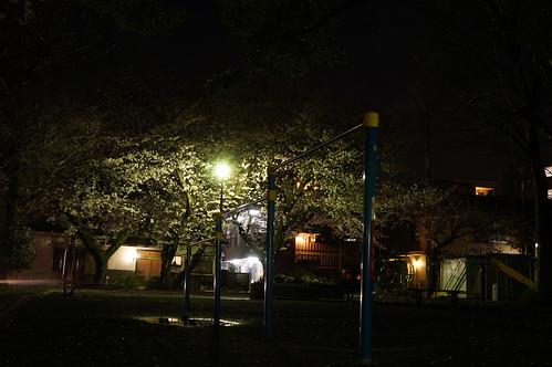 明るいレンズも三脚も無いけど夜桜撮りたい