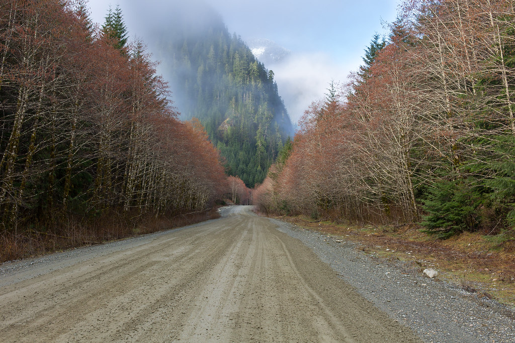 Vancouver Island. Road to Tahsis