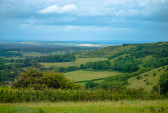 Dorset Churches and Landscapes