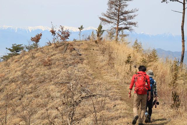 甲州高尾山(yu)-0008