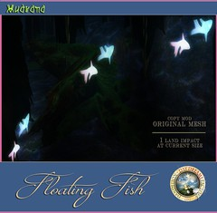DDDF MUDRANA  Floating Fish