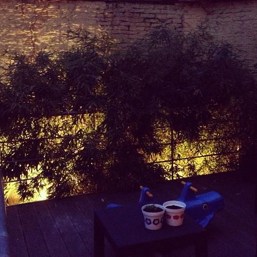 Ook Eurosong op mijn terras zie...