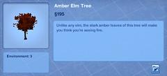 Amber Elm Tree