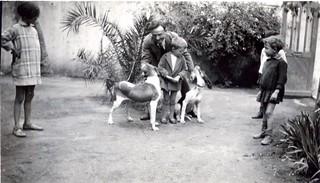 1929, Maroc, Casablanca. father, son & dogs