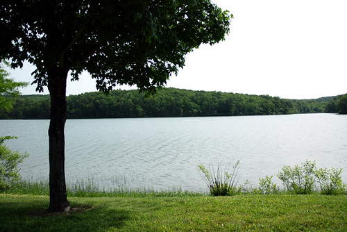 View-of-Lake