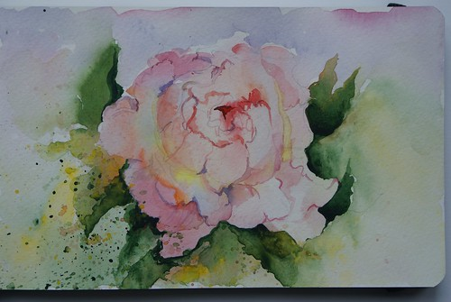 Watercolour sketch of peony