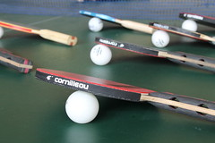 glasses(0.0), strings(0.0), cue stick(0.0), pool(0.0), cue sports(0.0), sports equipment(1.0), rackets(1.0),