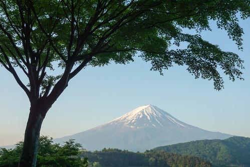 mountain landscape sony 日本 富士山 風景 mtfuji worldheritage amount carlzeiss 河口湖 fujigoko 山梨 世界遺産 lakekawaguchi 富士五湖 カエデ モミジ 富士河口湖町 fuji5lakes sal1680z variosonnart*dt1680mmf3545za slta65v α65