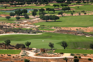 sports_golf Elea 7