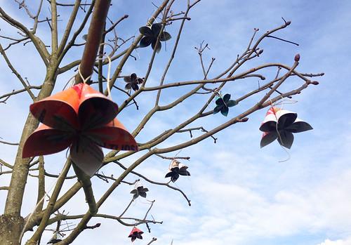 FlowerTree CloseUp 1 by Mr.&Mrs.Gray