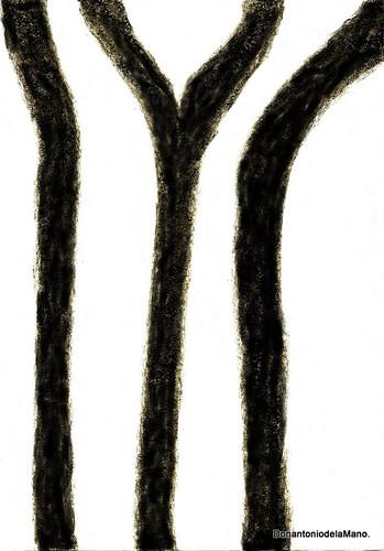 Zebra by Donantonio de la Mano
