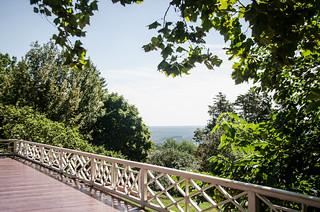 Monticello View