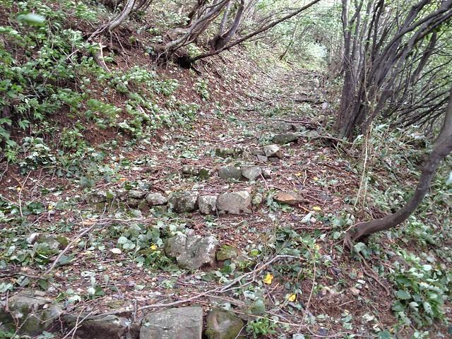 鍋倉山-石階段
