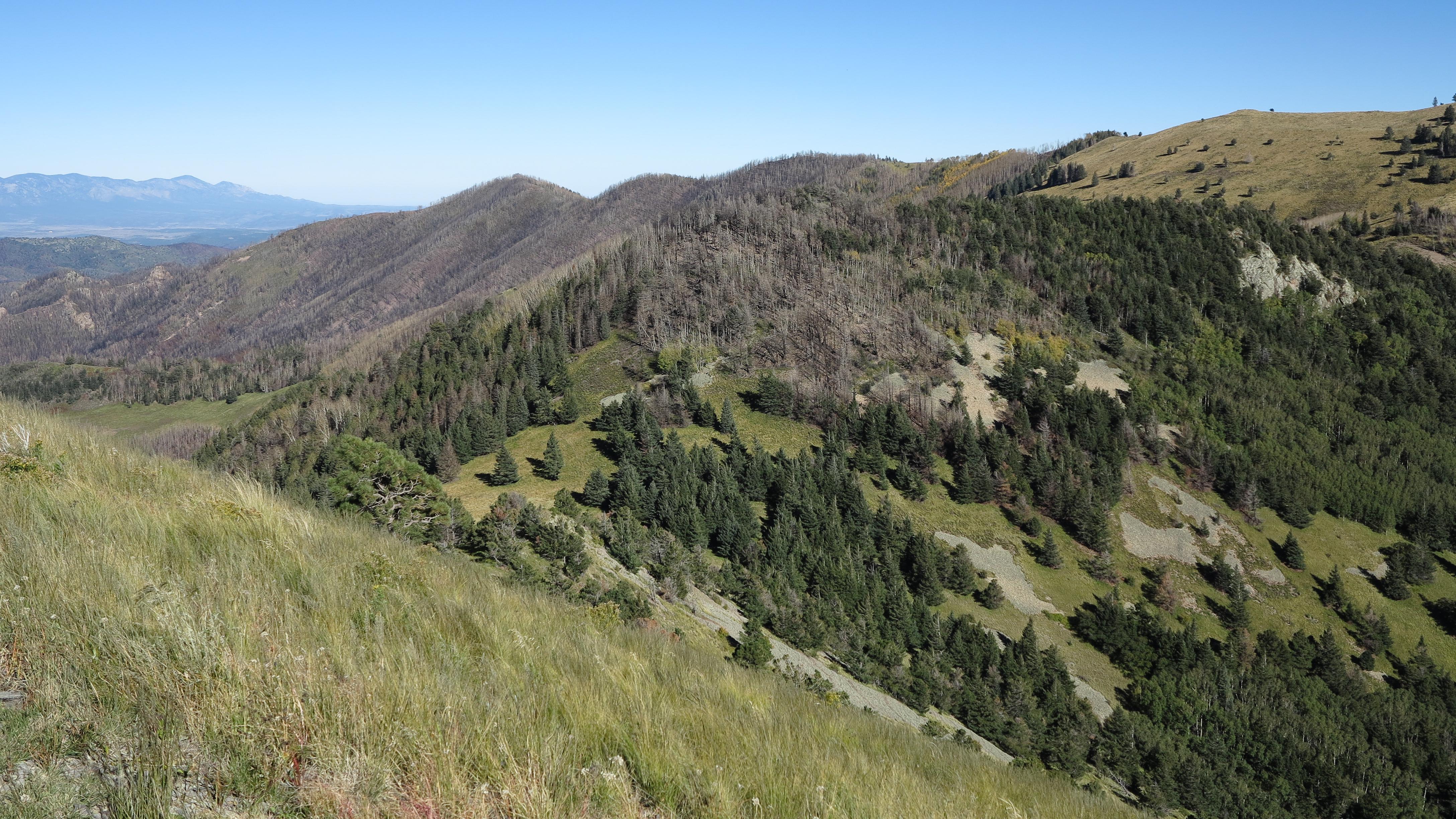 Elevation Of Sierra Blanca Peak New Mexico Usa