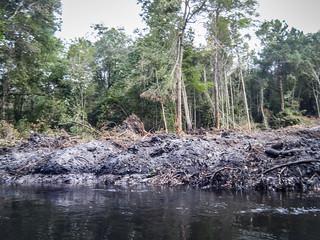 South Edisto River-088