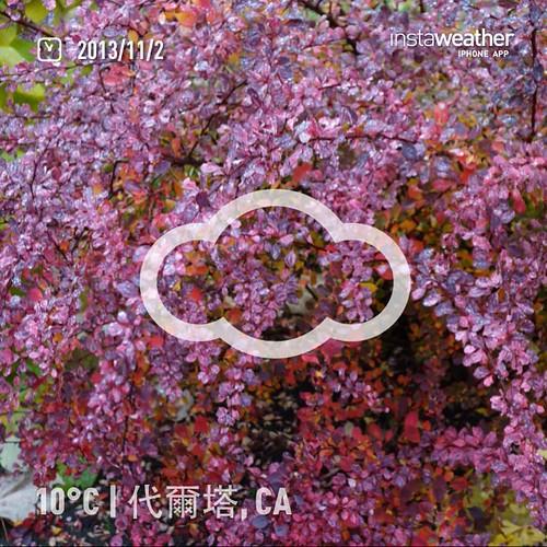 #weather #instaweather #instaweatherpro  #sky #outdoors #nature #world #love #followme #follow #beautiful #instagood #fun #cool #like #life #nice #happy #colorful #photooftheday #amazing #代爾塔 #加拿大 #day #autumn #rain #ca ☔️晚上好☕️