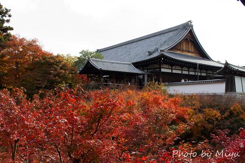 IMG_5108東福寺