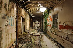 whittingham mental asylum