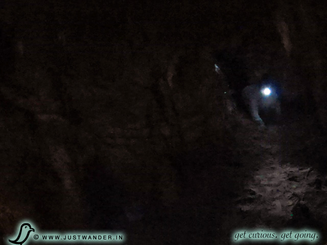 PIC: Colossal Cave Ladder Tour - crawling