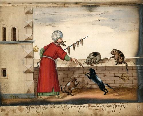 002-Alimentando a los gatos-Türkisches Manierenbuch-1595- ORKA Open Repository Kassel
