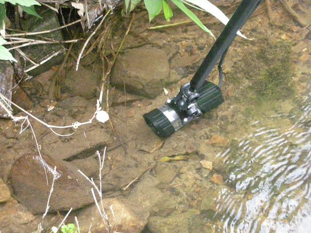 きたひろネットによる水中撮影.