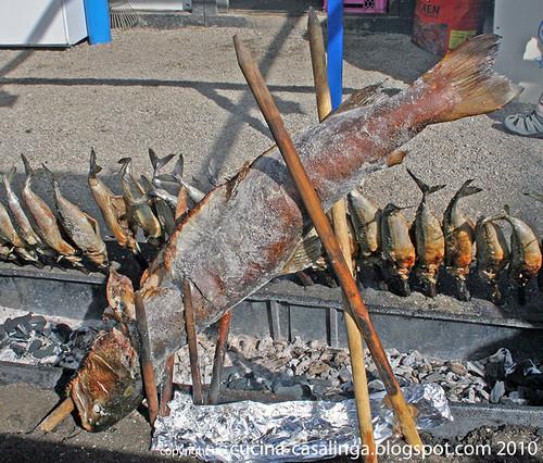 Sonderfisch FischerVroni