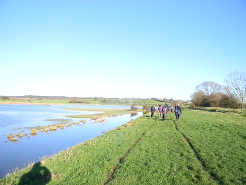Along a drainage ditch