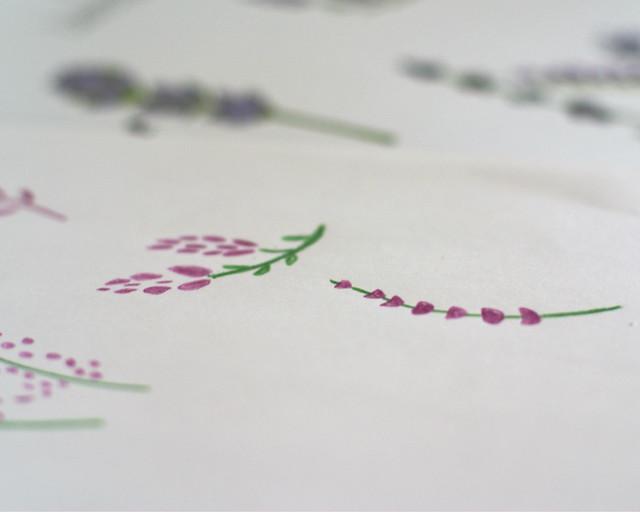 lavender drawings 2