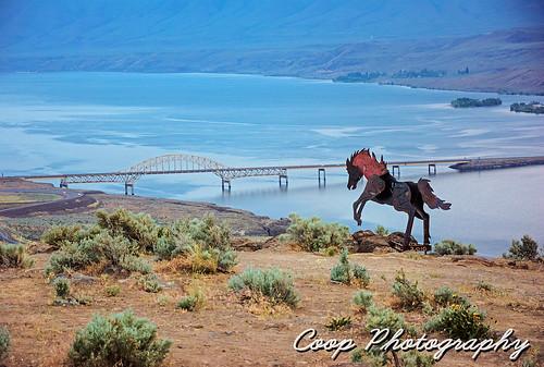 bridge wild horses horse monument river photography washington spring nikon desert 10 central may columbia wa coop i90 ellensburg vantage niht 2013 d7100