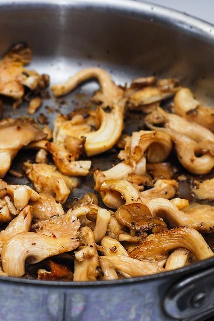 Mushroom sauce recipe, red wine mushroom sauce, oyster mushrooms
