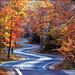 Door_County_fallDrive