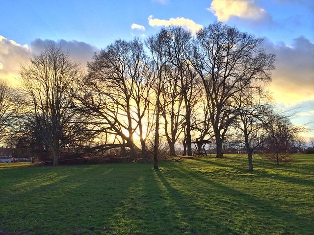 Heavitree Park sunset