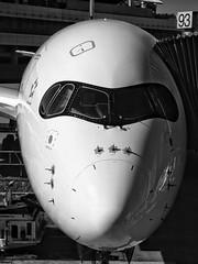 A350 headshot