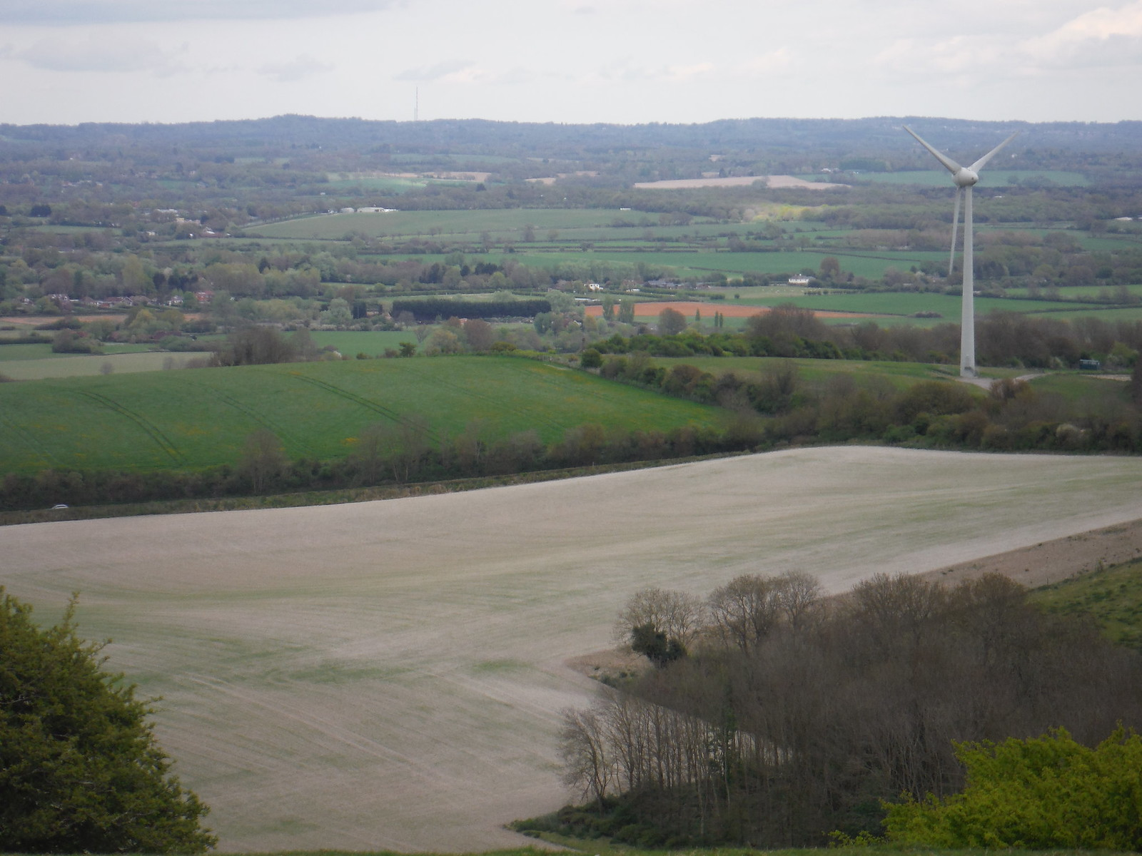 Glyndebourne Wind Turbine, from Saxon Cross Copse SWC Walk 272 Uckfield to Lewes