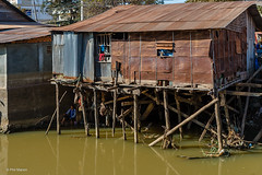 Siem Reap, Cambodia stilt house