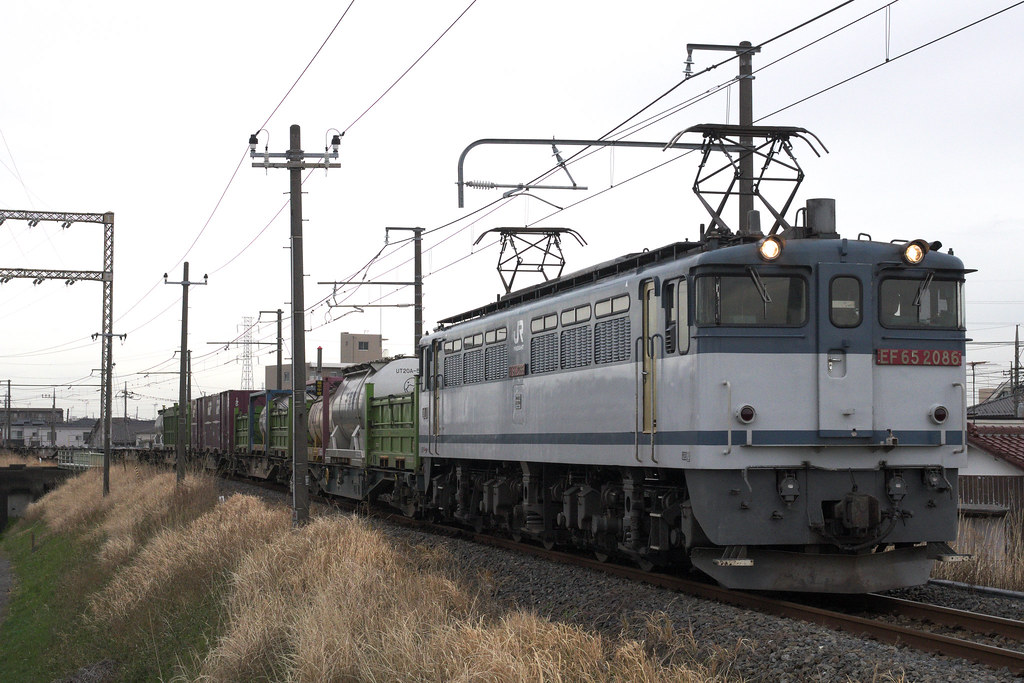 IMGP2963