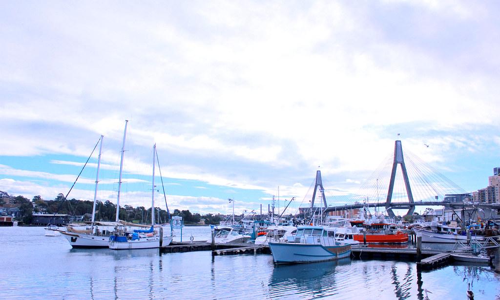 sydney-fish-market-alfreso-dining