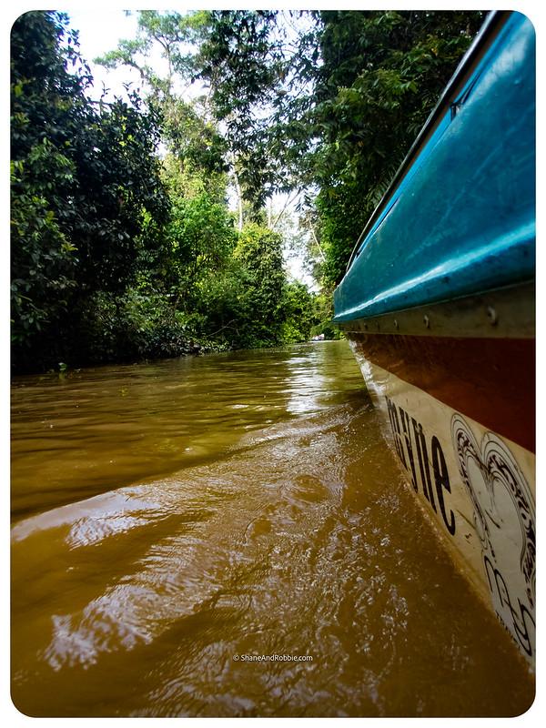 Borneo-20170411-P4110074