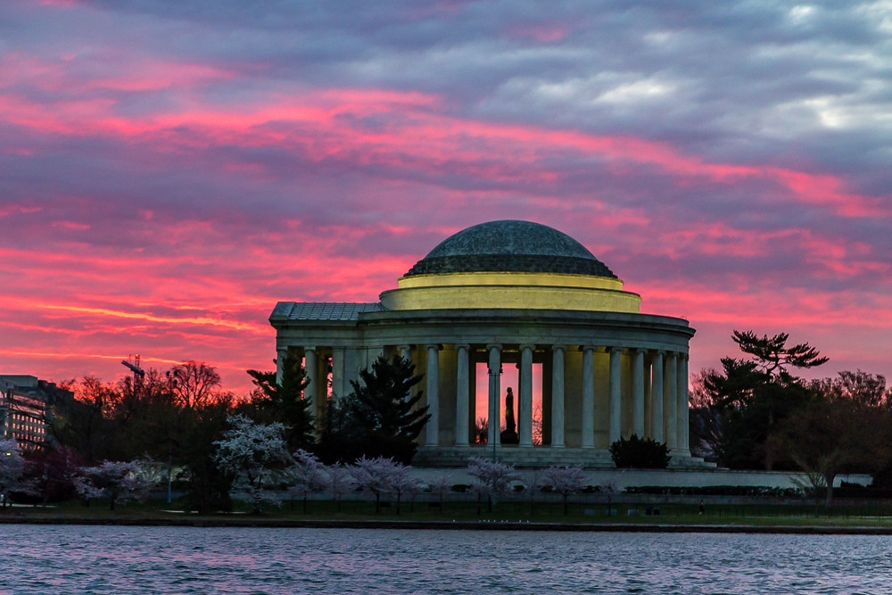 2017 华盛顿樱花-2
