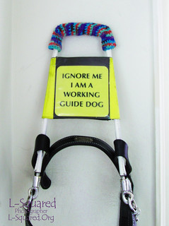 Colorful crocheted tube over the hand grip part of a guide dog harness laying against a white wall.