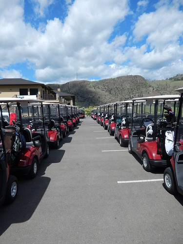 Golf Carts lined up (2013 STF)