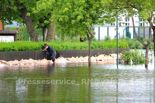 2013.06.12 Klietz Hochwasser (6)