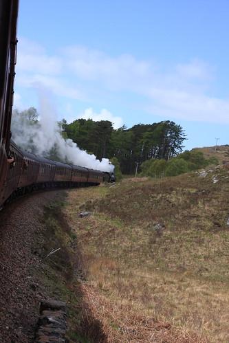 train55