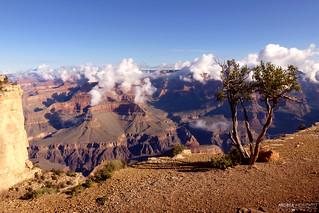 Trail Overlook to Hopi Point, Grand Canyon National Park - Arizona